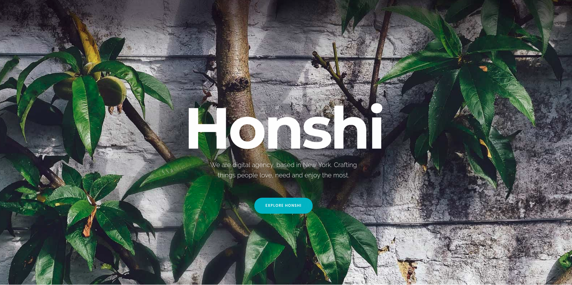 Honshi